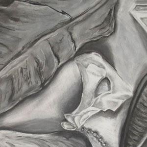 Eric Pedersen - Still Life Collection Drawing